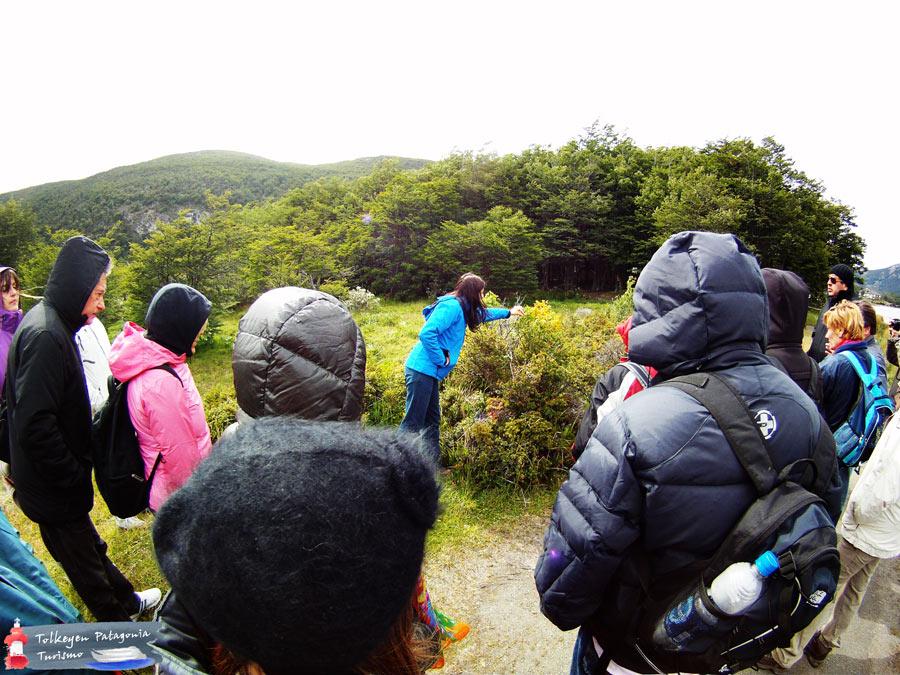 Parque Nacional TDF Tolkeyen Patagonia Turismo