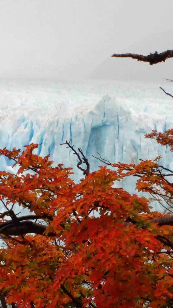 Otoño en el Glaciar Perito Moreno