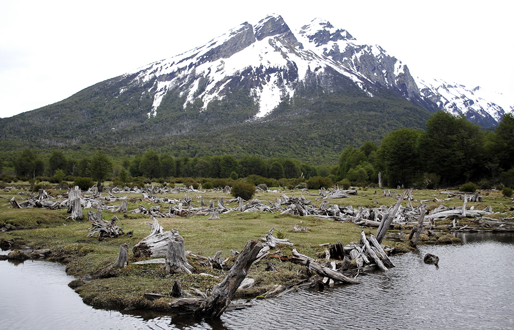 parque-nacional-ushuaia