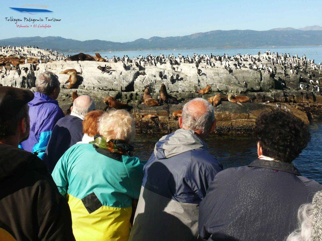 Visita a la Isla de Lobos